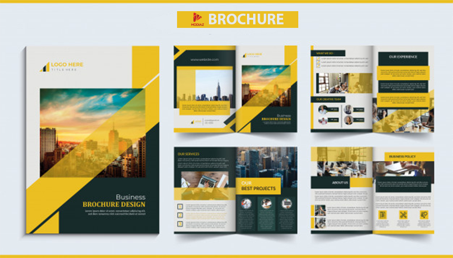 thiet-ke-brochure.png
