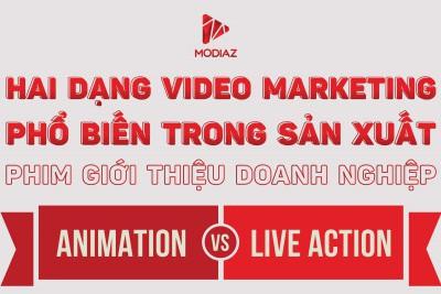 Live action vs Animation - Hai dạng video marketing phổ biến trong sản xuất phim giới thiệu doanh nghiệp