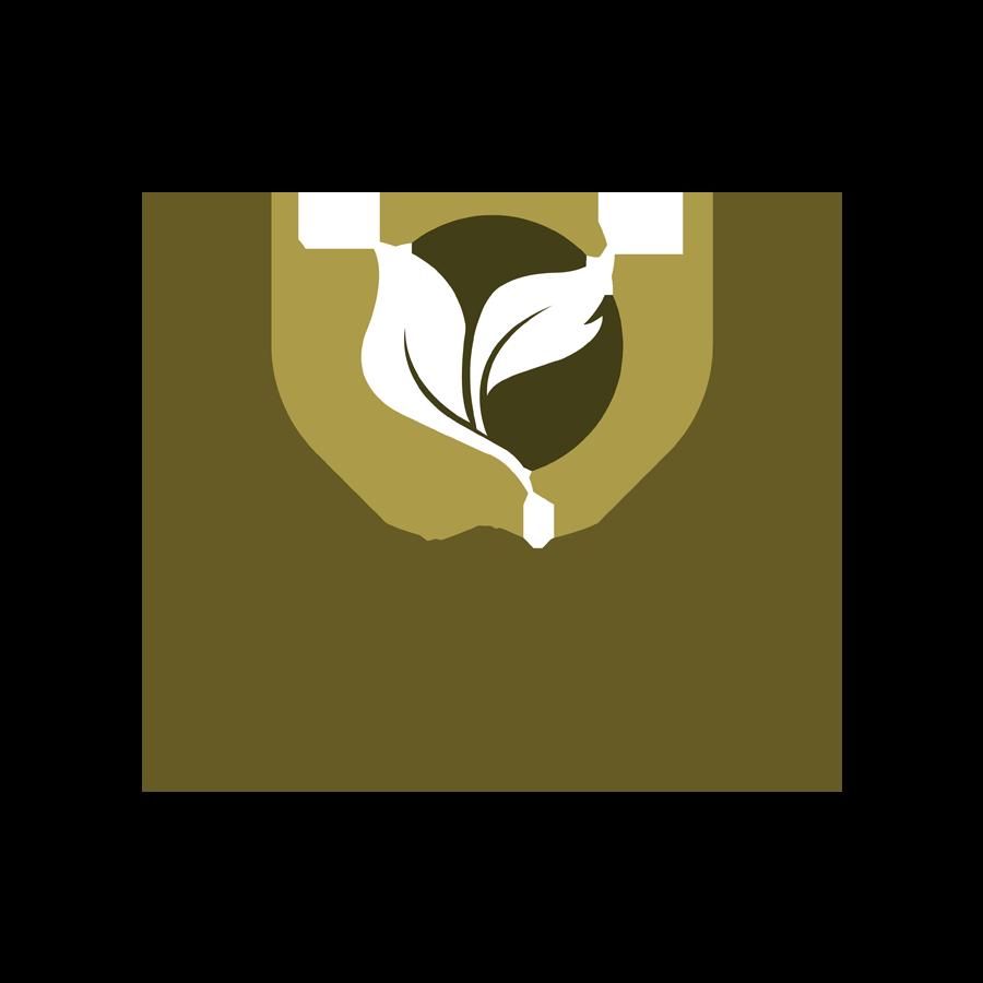 Thiên Ý Pharma