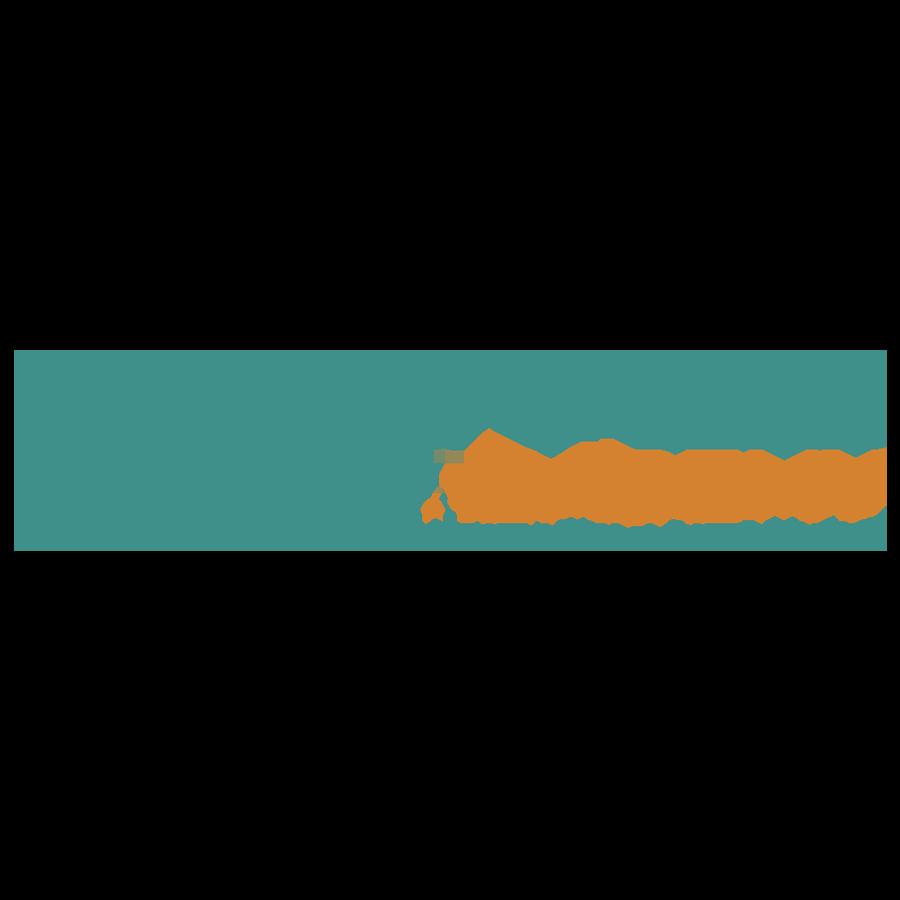 Viettel Academy